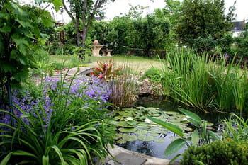 Le jardin enchanteur de Lolita
