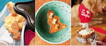 Cuisinez pour votre chien