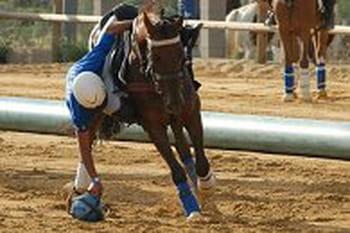 Le horse-ball, un sport équestre physique et ludique