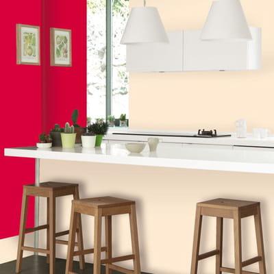Peinture cuisine bains de dulux valentine du sol aux - Dulux valentine cuisine ...