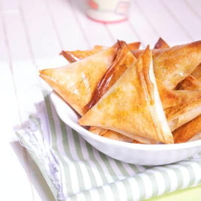Samoussas thon et c r ales 35 recettes pour cuisiner du - Cuisiner du thon en boite ...