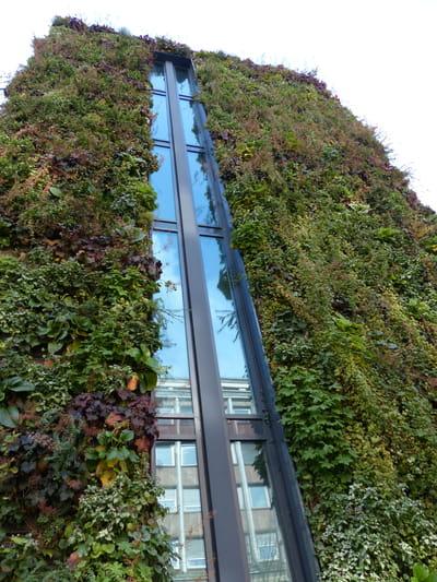 Comment installer un mur v g tal construire un mur - Construire mur vegetal exterieur ...