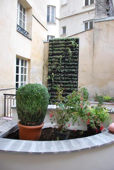 avantages et contraintes d 39 un mur v g tal construire un mur v g tal en int rieur et en. Black Bedroom Furniture Sets. Home Design Ideas