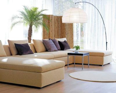 jardin d 39 hiver esprit exotique. Black Bedroom Furniture Sets. Home Design Ideas