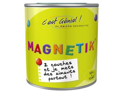 peinture 'magnétik - c'est génial' de la maison décorative chez leroy merlin