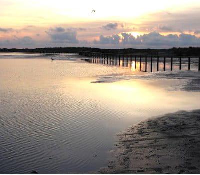 les plages des bouches du rh 244 ne ces plages fran 231 aises o 249 vos chiens sont les bienvenus