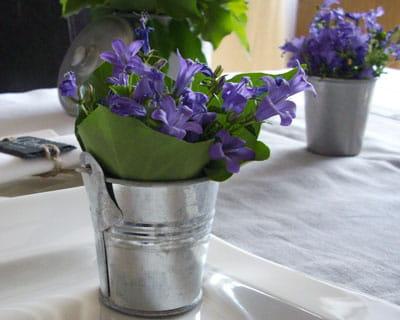 Fleurs du jardin en savoir plus journal des femmes for Jardin issler