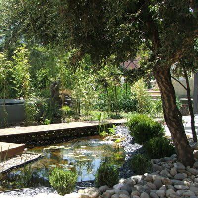 Une imposante for t de bambous am nagement d 39 un jardin for Amenagement jardin foret