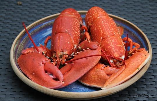 Comment cuire un homard journal des femmes - Comment cuisiner le homard ...