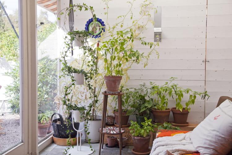 pi destal pour plantes d 39 ikea. Black Bedroom Furniture Sets. Home Design Ideas