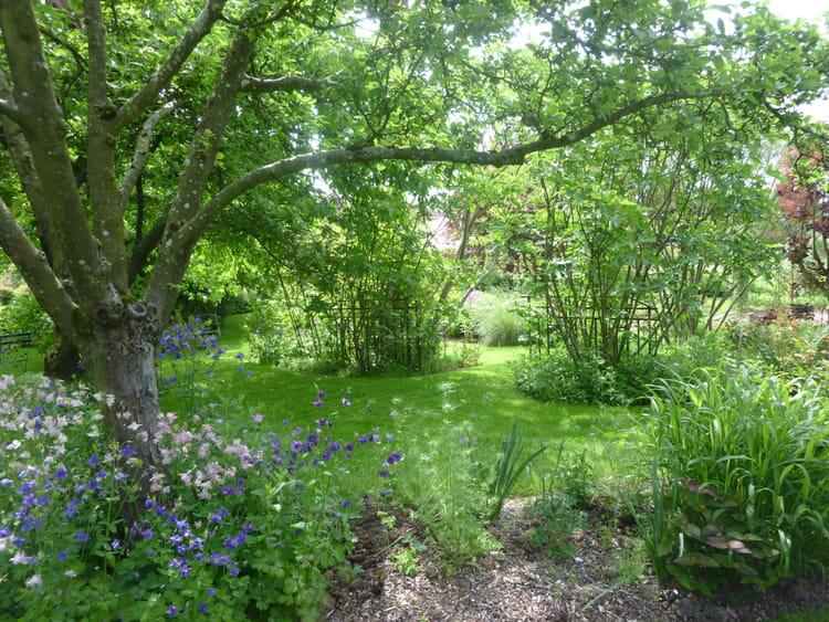 Le jardin en hiver le jardin pour tous les sens for Jardin pour tous