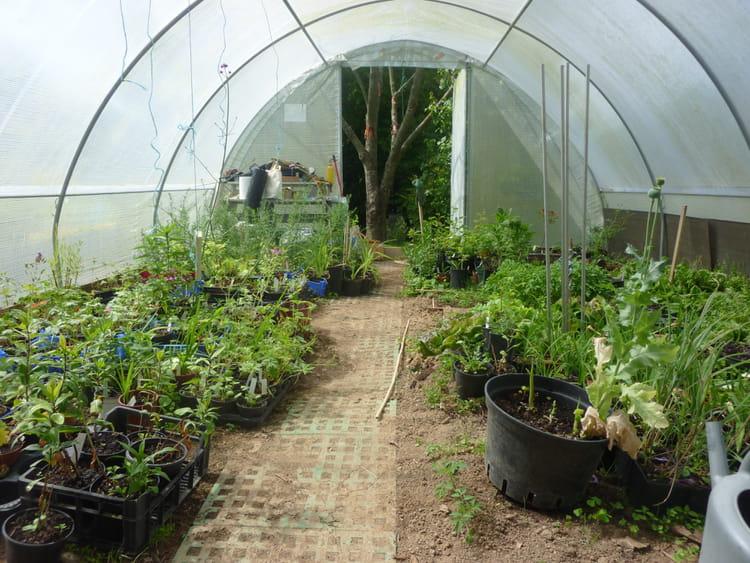 Un Jardin Une Association Le Jardin Pour Tous Les Sens