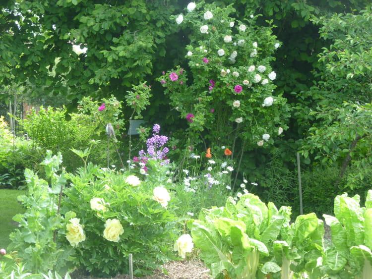 Le Jardin Pour Tous Les Sens Journal Des Femmes