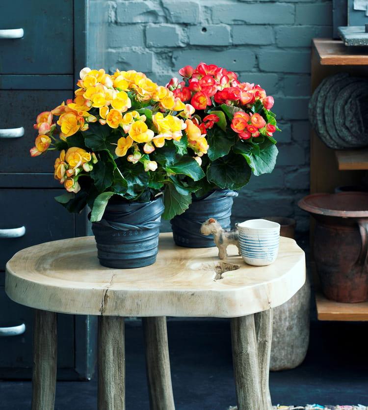Diy un cache pot r cup 39 avec une chambre air journal - Curieux comme un pot de chambre ...