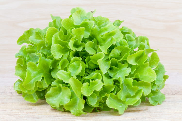comment garder une belle salade plusieurs jours. Black Bedroom Furniture Sets. Home Design Ideas