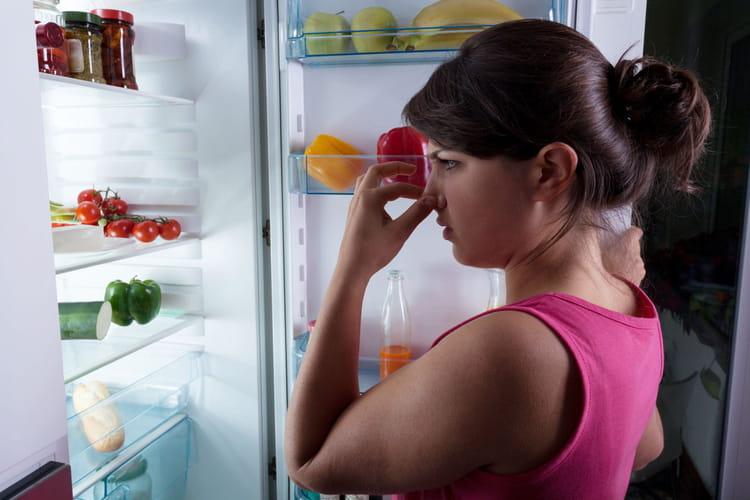 Comment chasser les mauvaises odeurs du r frig rateur - Comment chasser les moucherons ...