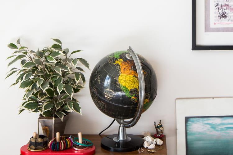 8 plantes d 39 int rieur faire pousser chez soi. Black Bedroom Furniture Sets. Home Design Ideas