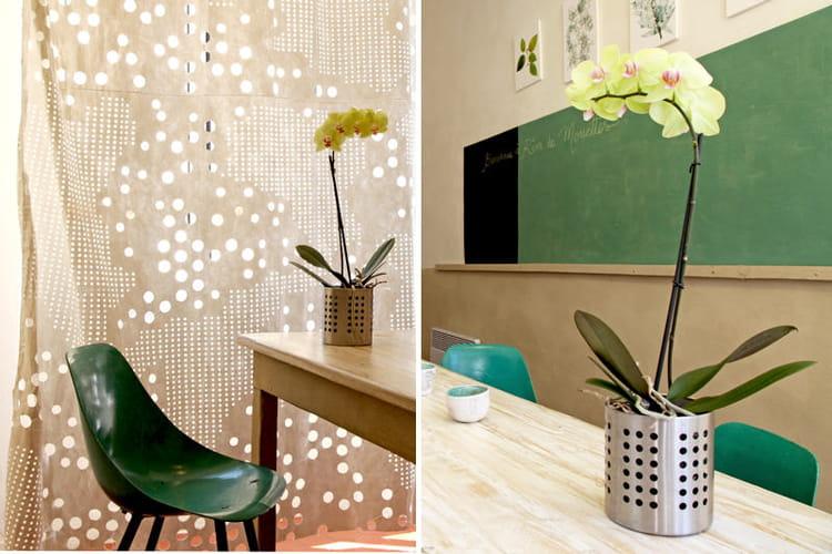 gouttoir couverts belles plantes cherchent pr sentoirs originaux journal des femmes. Black Bedroom Furniture Sets. Home Design Ideas