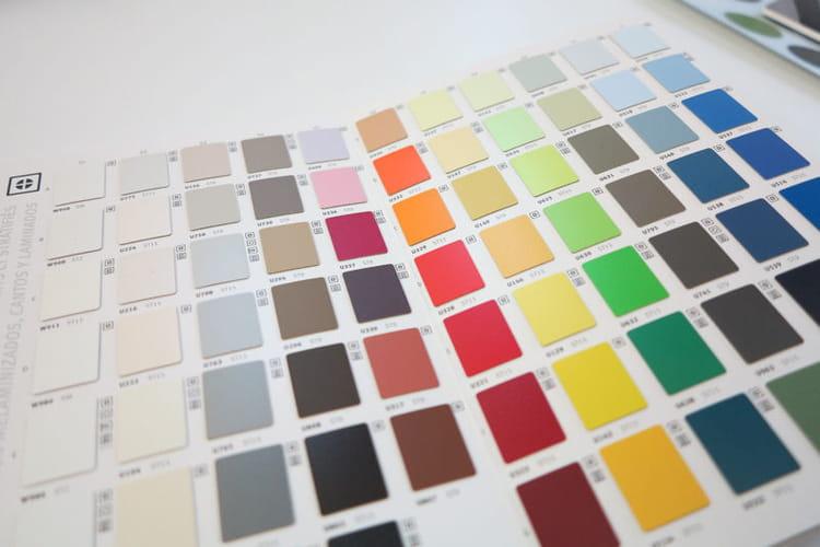 Le nuancier on a test la formation d coration d 39 int rieur journal - Choix couleur peinture ...