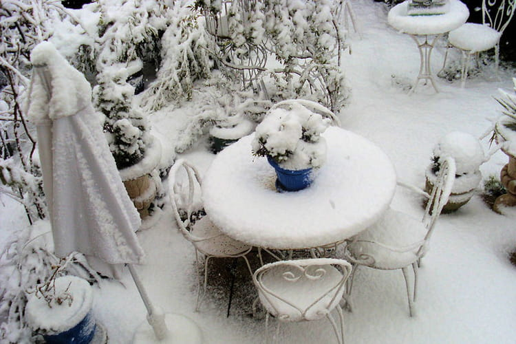 Salon de jardin en hiver vos v g taux dans la lumi re de for Jardin en hiver