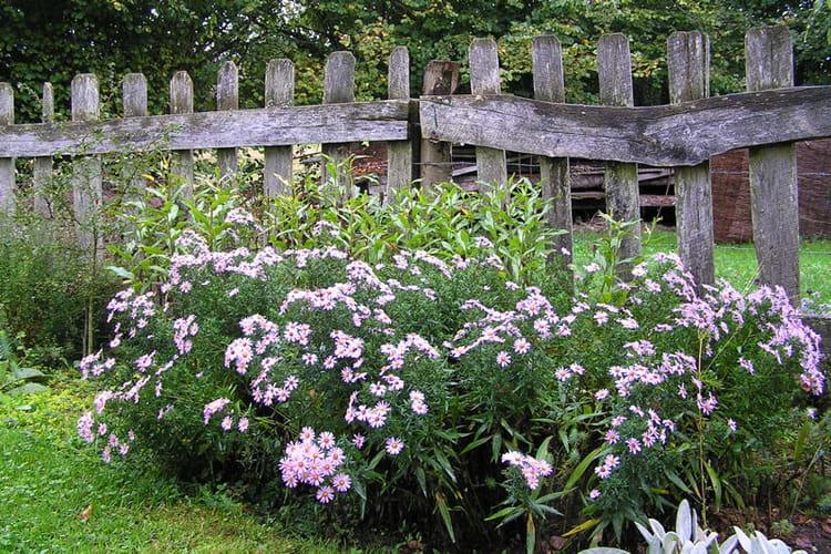 Une cl ture en bois pleine de charme visitez le jardin - Deco jardin journal des femmes toulouse ...