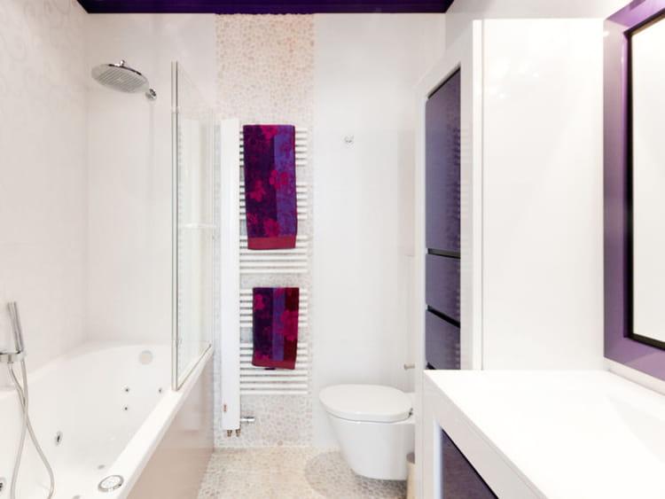 Salle de bains moderne en blanc et violet salle de bains for Salle de bain mauve et blanc