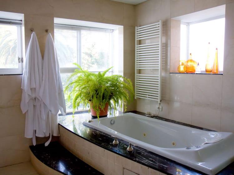 Une baignoire balnéo dans la salle de bains : Une maison avec piscine ...