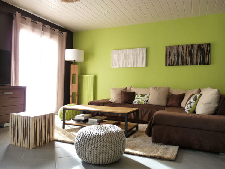 Un mur vert anis for Salon qui se transforme en chambre