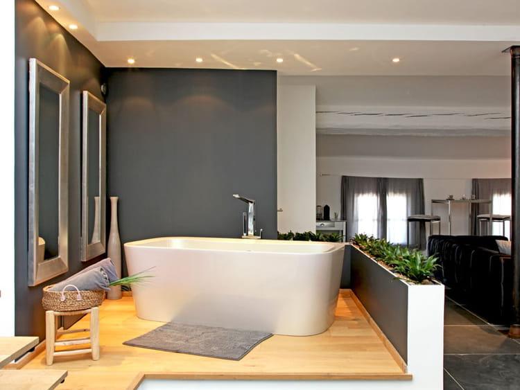 Baignoire îlot dans la salle de bains  Style urbain chic