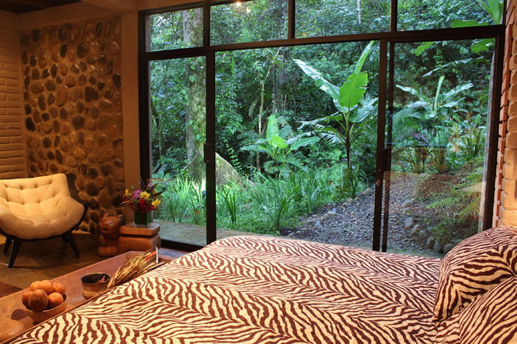 chambre hamdryade zebre