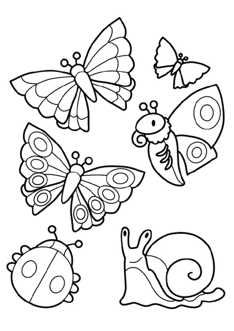 funny fly insects coloring pages - photo#36