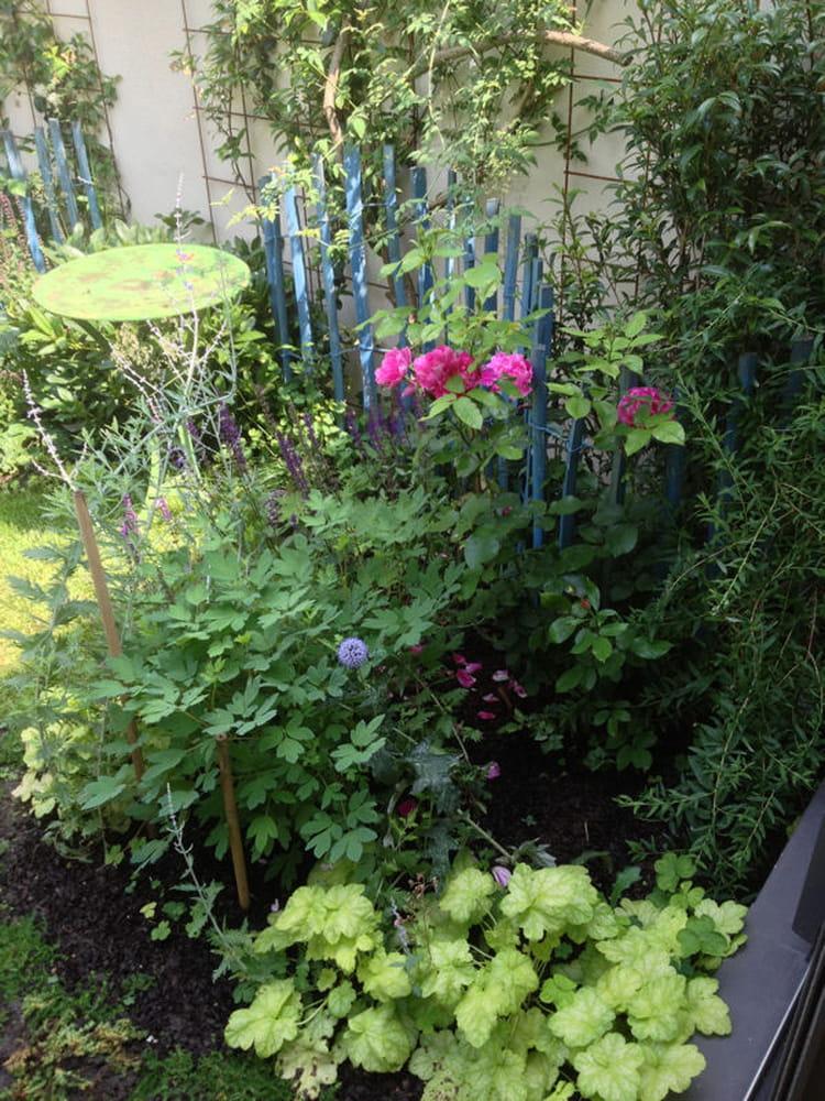 Le charme d 39 un jardin anglais un mini jardin de ville for Decoration jardin rosier