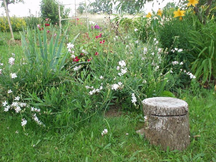 Rondin de bois pour faire une pause visitez le jardin anglais de michelle journal des femmes - Rondin de bois pour jardin ...