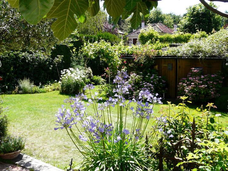 La cabane au fond du jardin visite d 39 un foisonnant - La cabane au fond du jardin laurent gerra ...