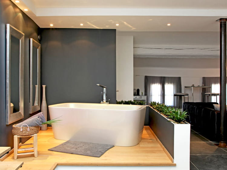 une salle de bains ouverte sur le salon. Black Bedroom Furniture Sets. Home Design Ideas