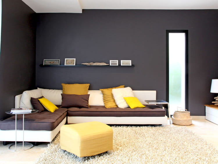 d co salon jaune et noir. Black Bedroom Furniture Sets. Home Design Ideas