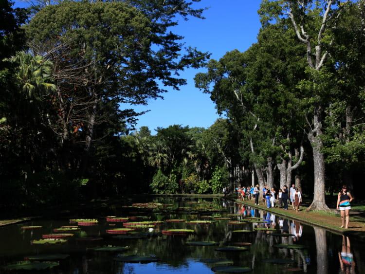 Le jardin de pamplemousse dix bonnes raisons de passer for Jardin pamplemousse