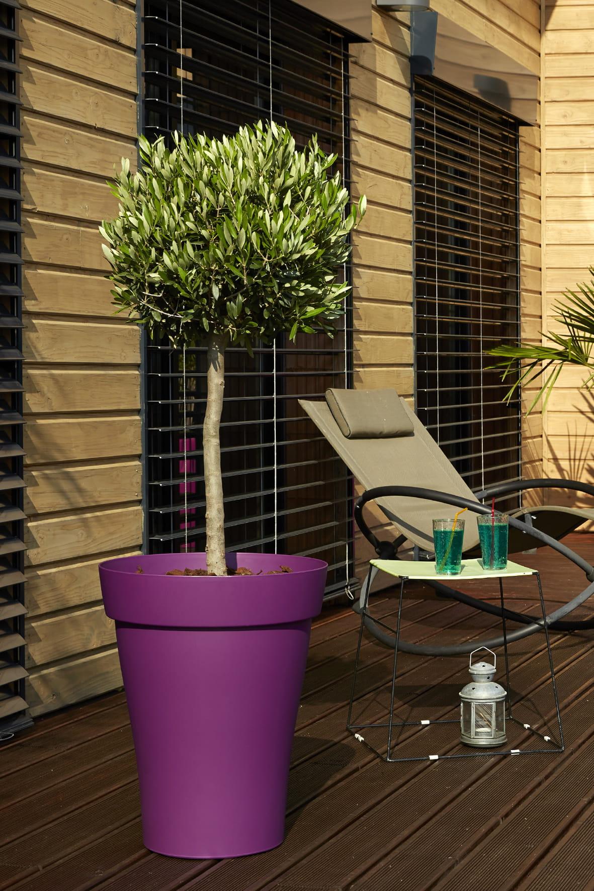 pot rom o plus de jardiland jardini res et pots une d coration printani re s 39 invite sur le. Black Bedroom Furniture Sets. Home Design Ideas