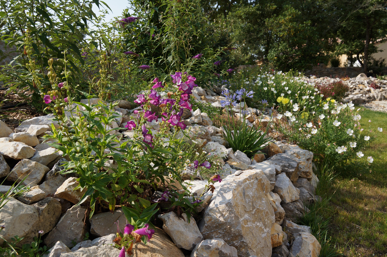 Concours de la plus belle prairie fleuries dans Maison, Jardin, Cuisine,