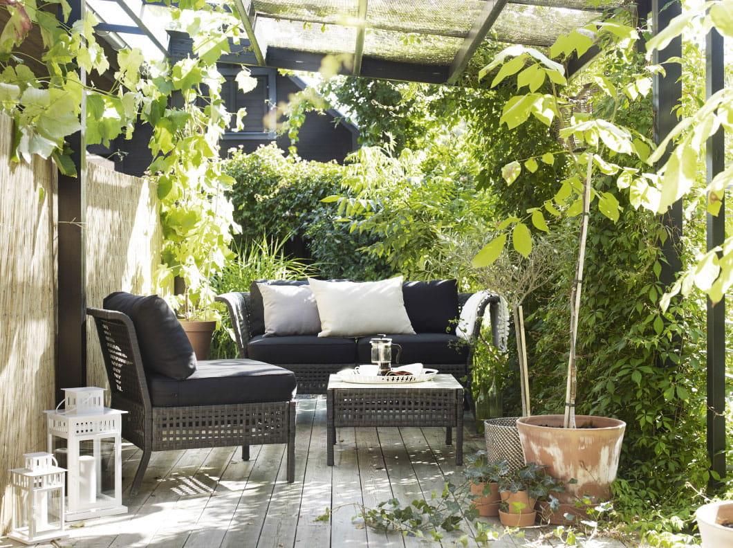 La protection v g tale comment se prot ger du vis vis - Comment se debarrasser du liseron au jardin ...