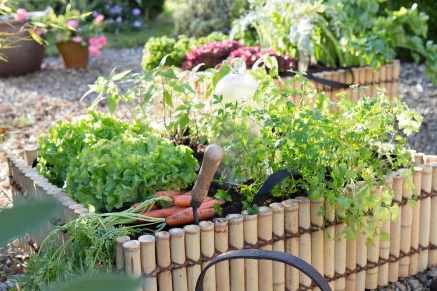 Comment s 39 occuper du jardin quand on a la flemme journal des femmes - Comment avoir un beau jardin ...