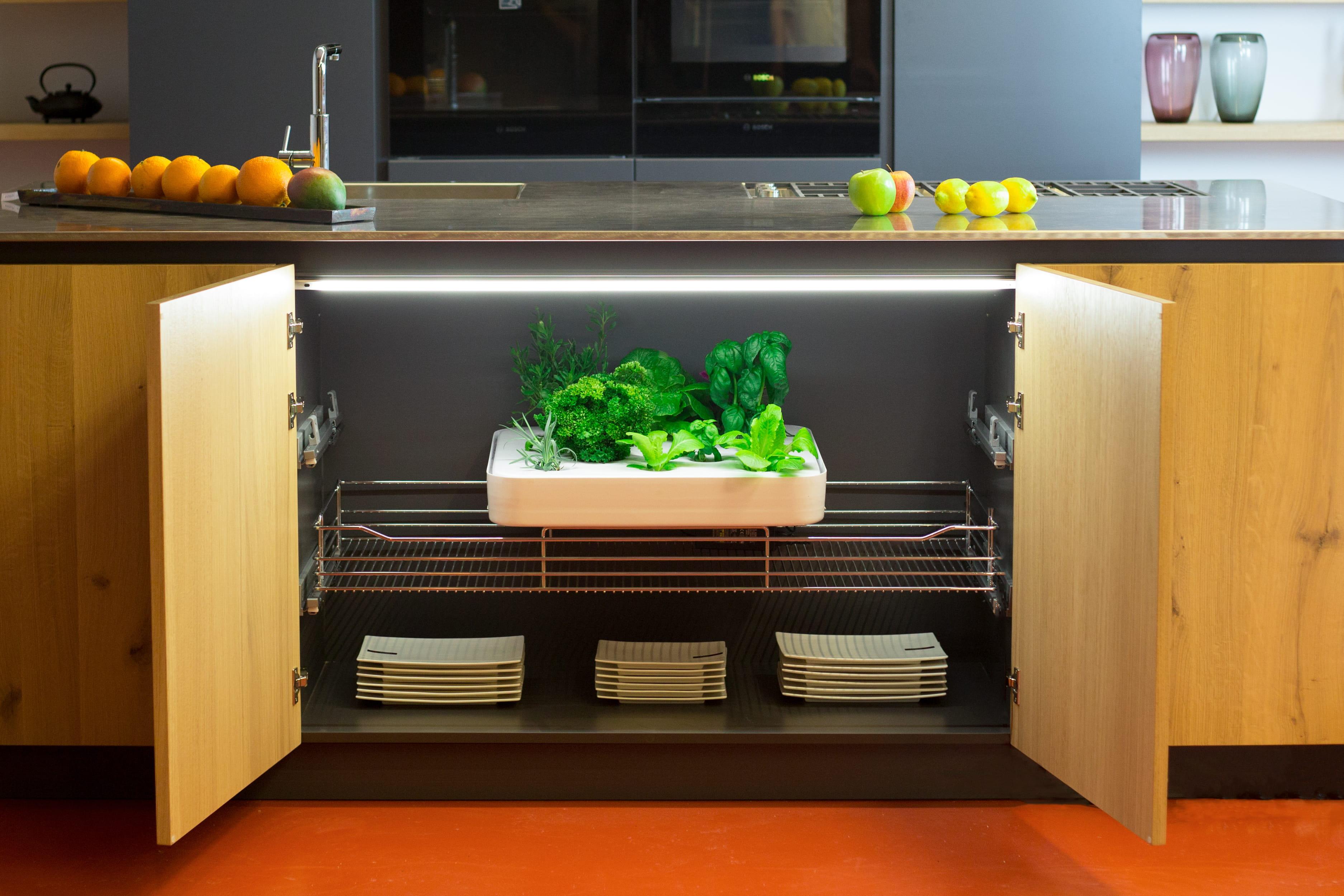 Un potager lectrom nager et autonome dans votre cuisine - A poil dans son jardin ...