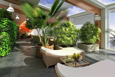 s 39 occuper de ses plantes d 39 int rieur en novembre le. Black Bedroom Furniture Sets. Home Design Ideas