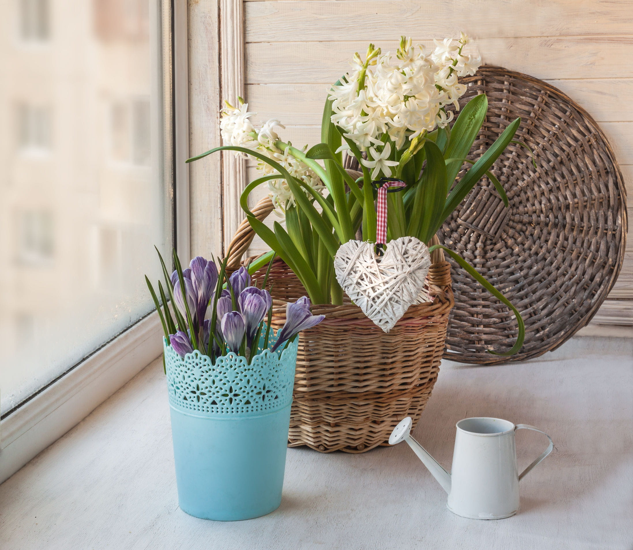 10 idées pour un joli jardin en hiver