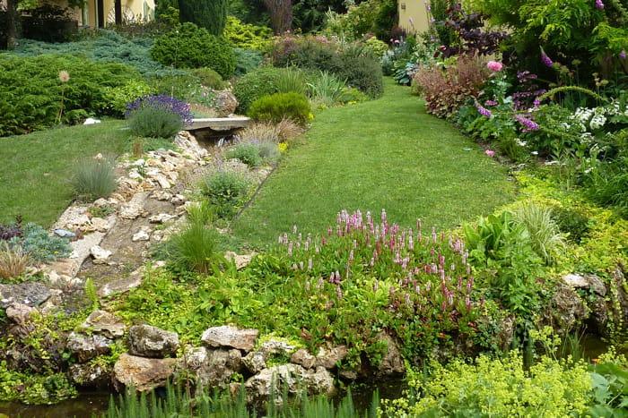 Ruisseau et bassin visitez le jardin de camille for Ca vient du jardin