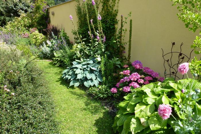 le long du mur visitez le jardin de camille journal. Black Bedroom Furniture Sets. Home Design Ideas