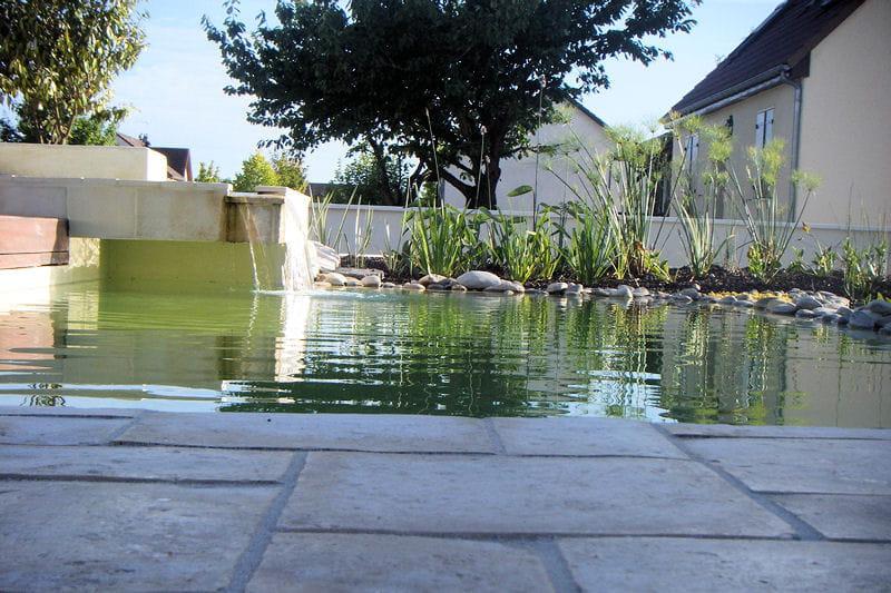 Ambiance zen au ras de l 39 eau une baignade naturelle dans for Ambiance zen jardin