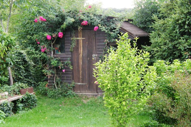 Une cabane en bois recouverte de roses promenade for Cabane outil jardin