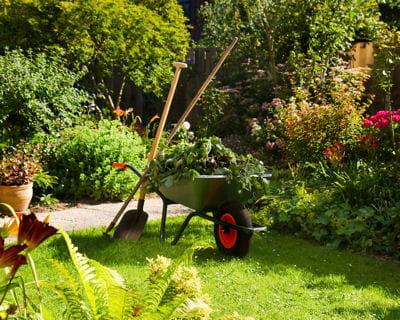 Le calendrier du jardinier pour juillet et ao t journal for Jardinier pour particulier