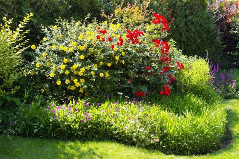 Massif Fleuri En Rondeur Visitez Le Jardin De Claude Et Maryvonne Journal Des Femmes